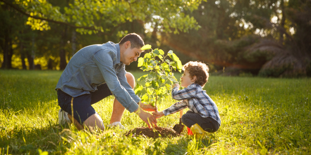 web3-father-son-plant-tree-ecology-planet-shutterstock